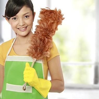 Maid Insurance